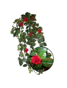 Urs Red Rose Leaf Silk Plant Reptile Enclosure Accessory
