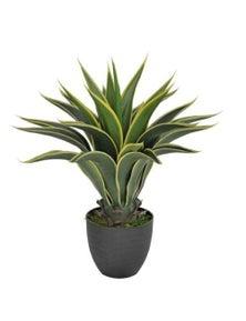 Designer Plants Artificial Agave 60cm