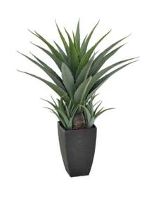 Designer Plants Artificial Agave in a Decorative Black Pot