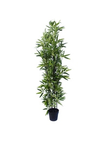 Designer Plants Artificial Bamboo Black Bamboo 180cm Real Touch Leaves