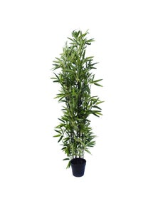 Designer Plants Artificial Bamboo Plant Black Bamboo 160cm Real Touch Leaves