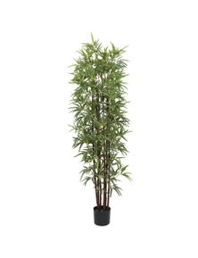 Designer Plants Artificial Bamboo Plant Dark Trunk (Potted)