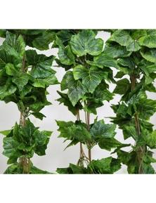 Designer Plants Artificial Ivy Garland Vines 260cm Each - 5 Per Pack