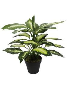 Designer Plants Artificial Leopard Lily (Dieffenbachia) with Pot 40cm
