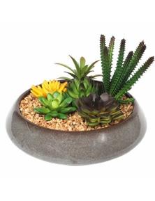 Designer Plants Potted Artificial Succulents with Round Decorative Bowl 19cm