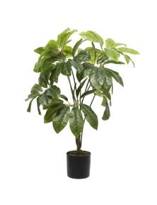 Designer Plants Potted Artificial Umbrella Tree 65cm