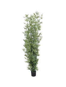 Designer Plants UV Stabilised Artificial Japanese Bamboo on a Green Trunk