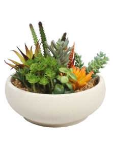 Designer Plants Potted Artificial Succulent Bowl with Natural Stone Pot