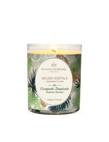 Plantes & Parfums 180g Perfumed Hand Poured Candle - Tropical Journey