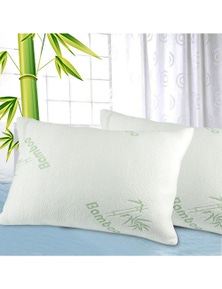 DreamZ 2 Pcs Bamboo Memory Foam Pillow with Bamboo Fabric Cover