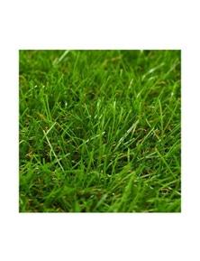 Artificial Grass 1M 40 Mm
