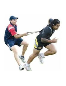Morgan Sports Power Resistor Harness Belt Short