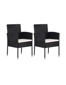 Garden Chair 2 Pieces Poly Rattan