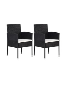 Garden Chair 2 Pieces Poly Rattan