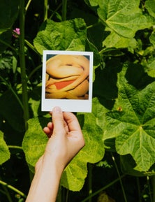 Polaroid i-Type Colour Film - Five Pack