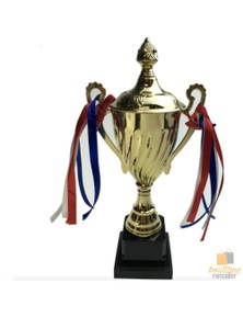 TROPHY CUP Sport Award Football School Table Tennis Gold Winner Achievement New