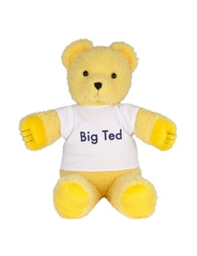 Play School Plush - Big Ted