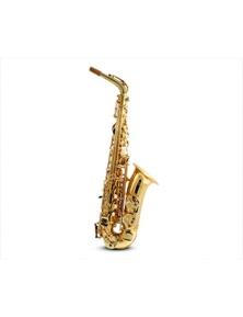 Freedom E Flat Alto Saxophone Brass Body Student KAS102