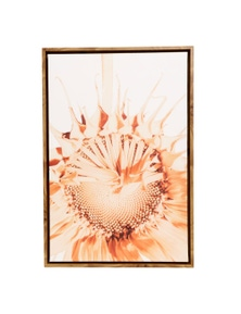 Splosh Flourish Contrast Sunflower Framed Canvas