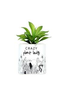 Splosh Crazy Plant Lady Pot Plant