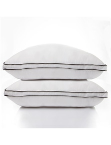 Casa Decor Silk Blend Gusset Pillow - Twin Pack