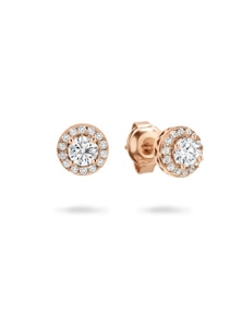 Georgini Petite Earrings Rose Gold