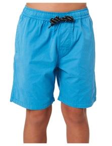 Swell Boys Ryder Beach Short - Teens