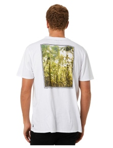 No News Men's City Of Palms Short Sleeve Tee Crew Neck Short Sleeve Cotton