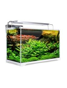 Dynamic Power Aquarium Starfire Glass Aquarium Fish Tank 35L