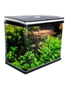 Dynamic Power Aquarium Curved Glass RGB LED Fish Tank 52L