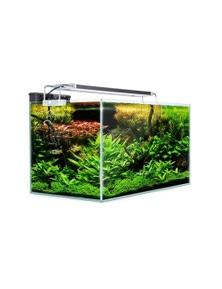 Dynamic Power Aquarium Starfire Glass Aquarium Fish Tank