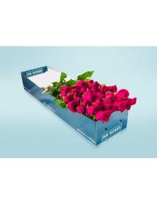Mr Roses 12 long Stemmed Pink Roses