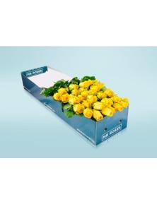 Mr Roses 24 long Stemmed Yellow Roses