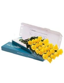 Mr Roses 21 Yellow Roses