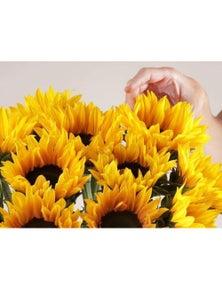 Mr Roses 10 Sunflowers