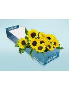 Mr Roses 15 Sunflowers