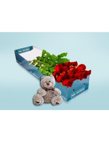Mr Roses Valentines 12 Long Red Roses and Teddy