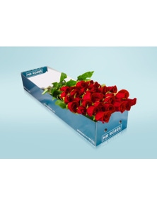 Mr Roses Valentines 20 Long Red Roses