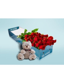 Mr Roses Valentines 20 Long Red Roses and Teddy