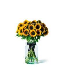 Mr Roses Sunflowers collection - 10 Stems