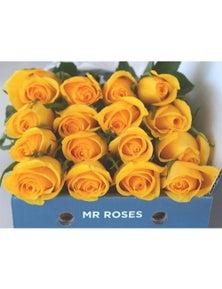 Mr Roses 12 Yellow Roses