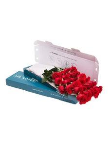 Mr Roses 21 Red Roses