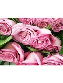 Mr Roses 6 Pink Roses