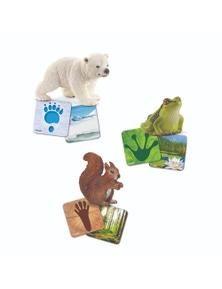 Schleich- Wild Life Flash Cards