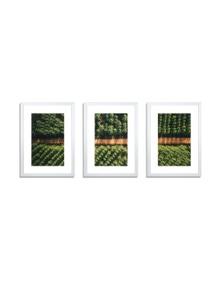 3-Piece White Photo Frame Set