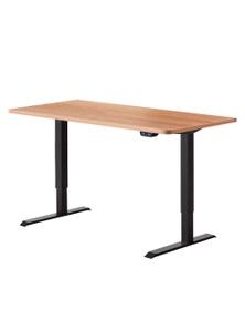 Artiss Roskos I Motorised Adjustable Standing Desk 120cm - Black/Oak