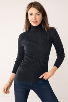 Capture Roll Neck Long Sleeve Ribbed Knit Top