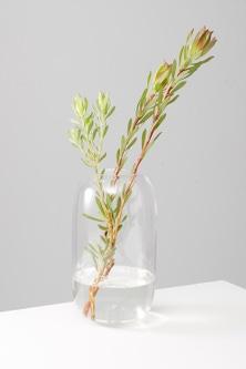 Isola Glass Vase